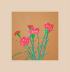 Strange flowers 3